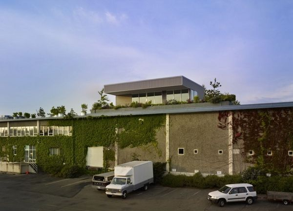 rooftop residence in Seattle 3