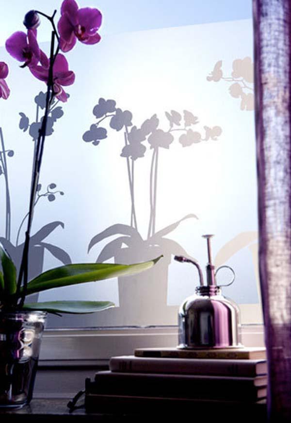 modern window film (2)