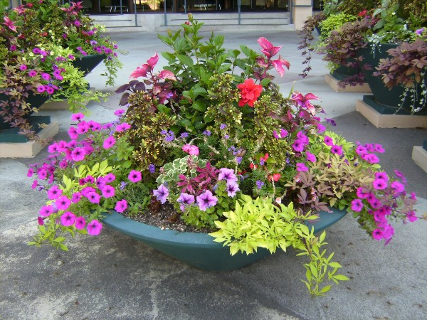 Floral Container