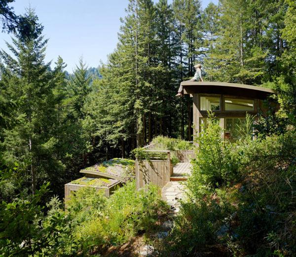 Mill-Valley-Cabins–Feldman-Architecture-(7)