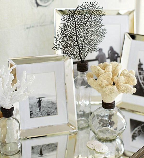 collection of seashell glass bottles and picture frames