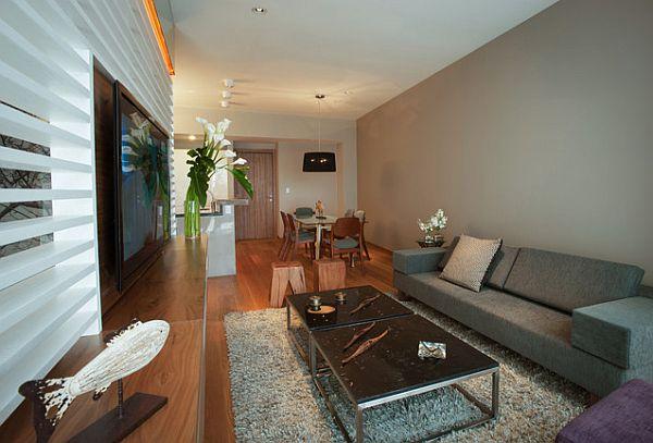 fancy small apartment design
