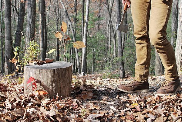 wood log for a christmas tree stand