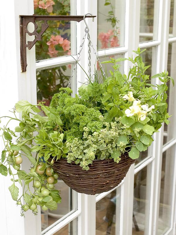 DIY Hanging Basket Vegetable Garden