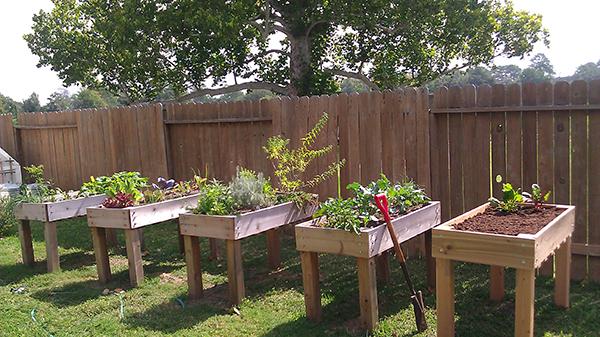 DIY Raised Planter Box Vegetable Garden