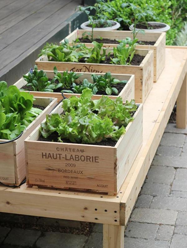 DIY Small Space Crate Vegetable Garden