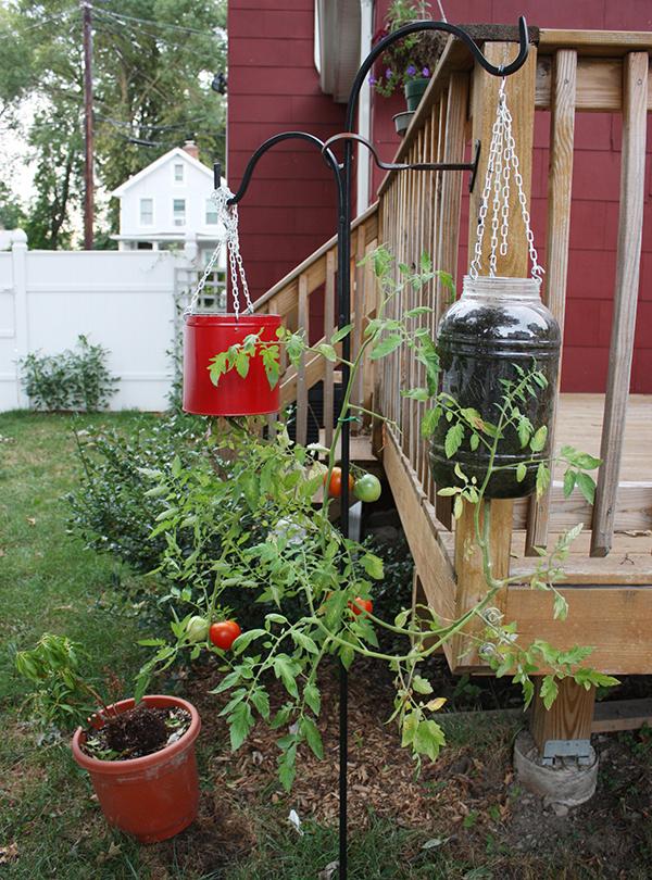 DIY Upside Down Vegetable Garden Planters