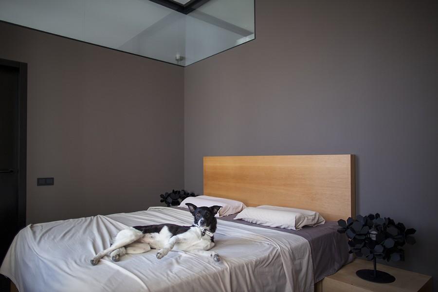 Minimalist bedroom in gray