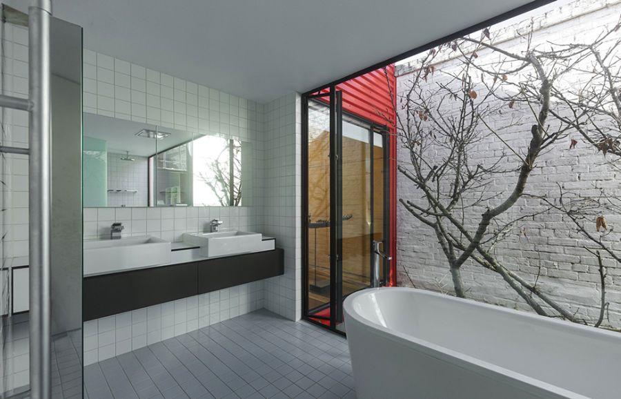 Japanese maple tree outside the bathroom
