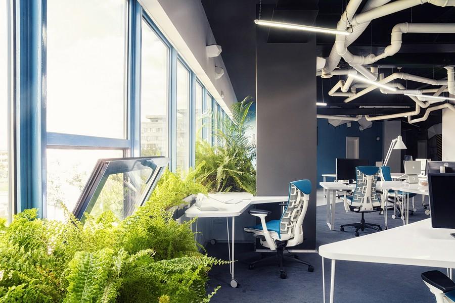 Narural green inside modern office