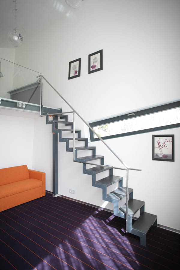 Zinc House by Horia Reit  (22)