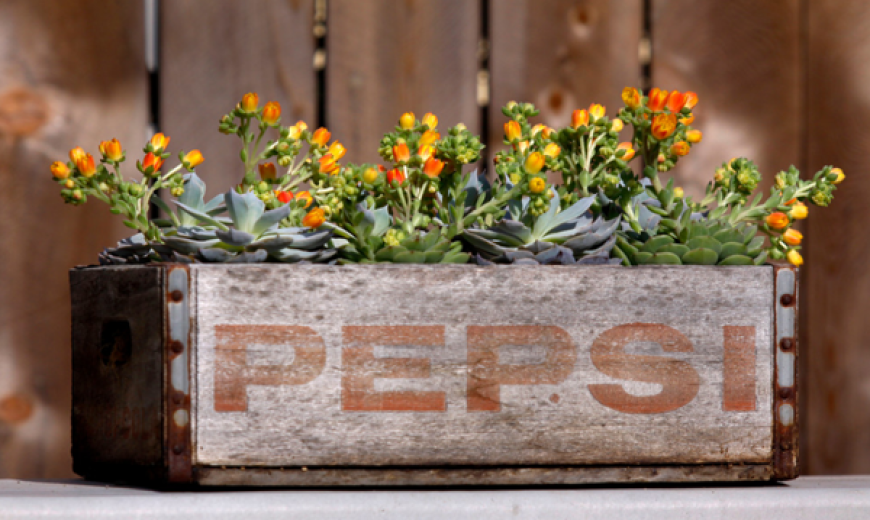 Upcycle Anything Into A Planter