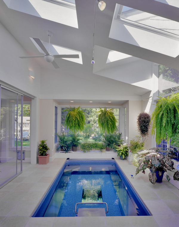Greenhouse with a pool 1