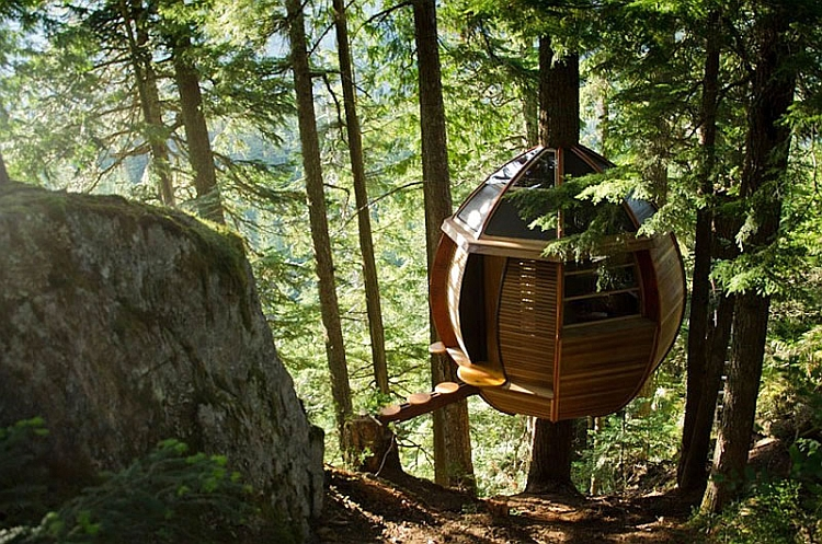 HemLoft cabin with a beuatiful walkway