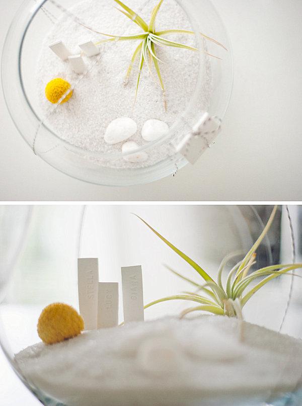 DIY air plant terrarium gift idea