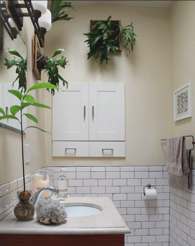 Elkhorn Fern Bathroom