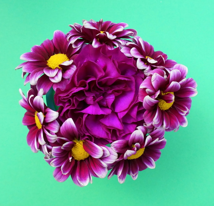 Carnation and daisy bouquet