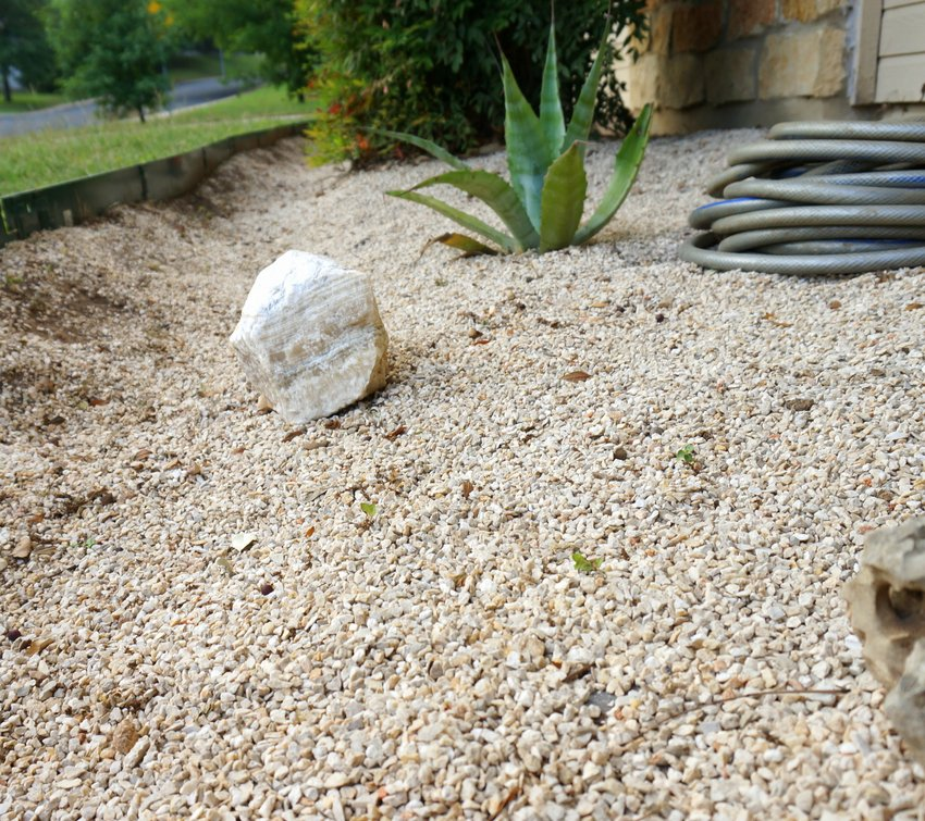 Consider adding more gravel to your garden