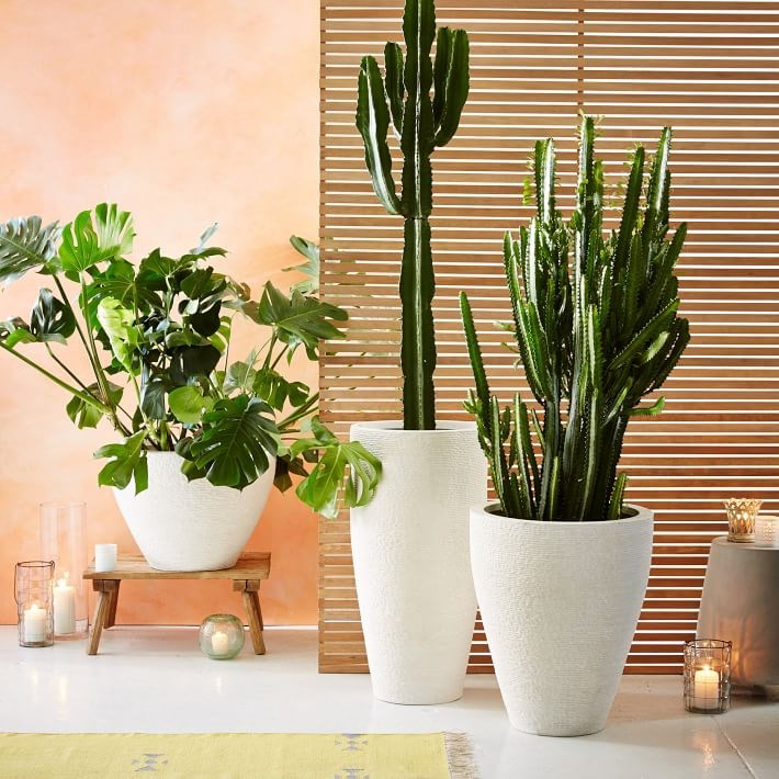 White stone planters from West Elm