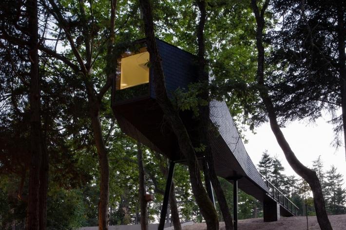 Tree Snake Houses II