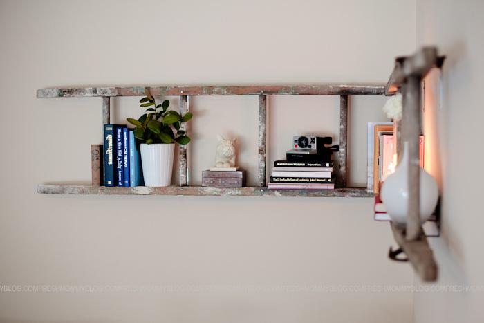 bookshelves ladder