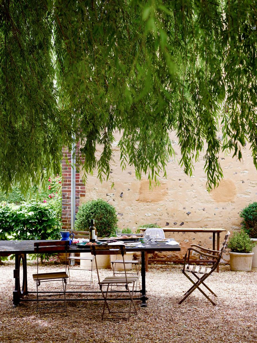 Weeping willow over an outdoor dining area