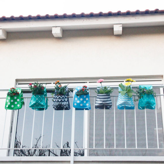 Adorable hanging planters in blue and green
