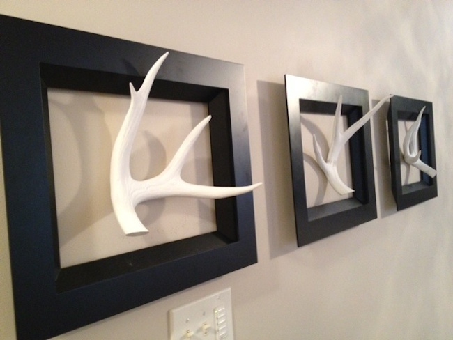 Real antlers painted white and displayed with black frames