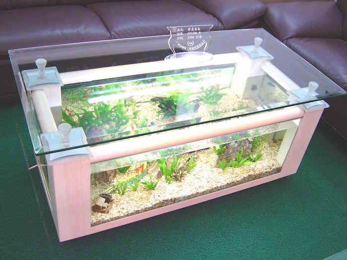Rectangular coffee table aquarium