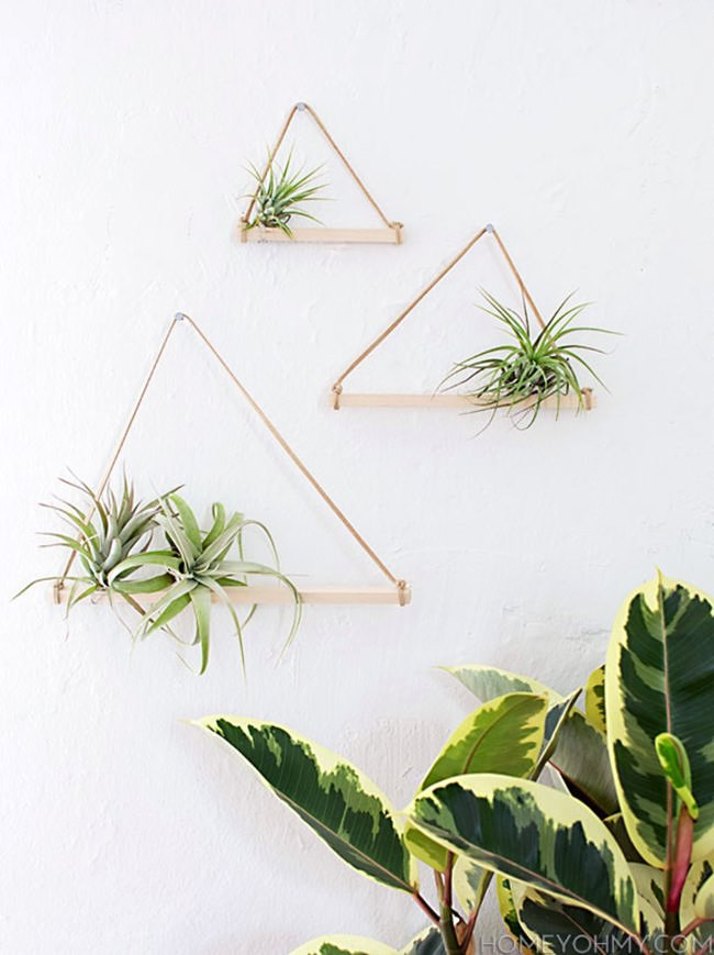 Air plant hangers from Homey Oh My!