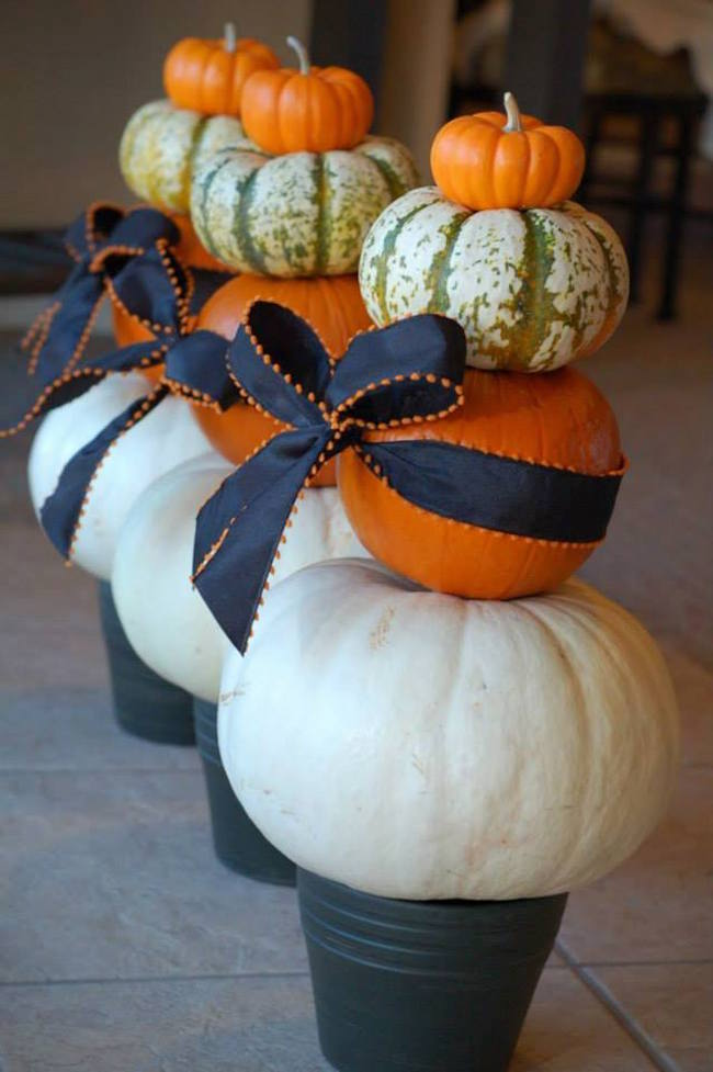 Beautiful pumpkins in planters with ribbon