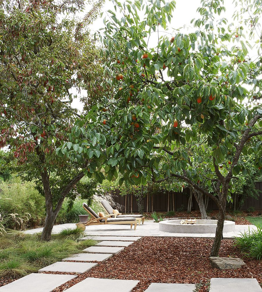 Christmas trees can be turned into mulch for your garden [Design: Arterra Landscape Architects]
