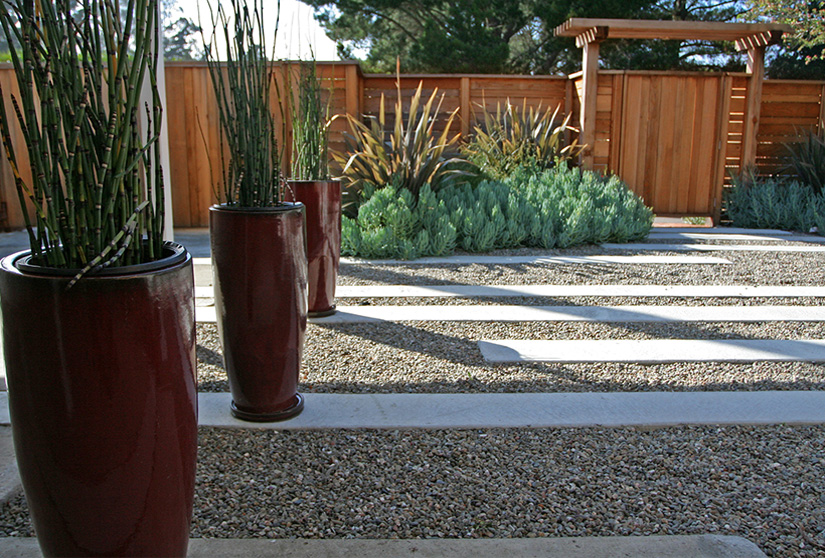 Containers of horsetail reeds make a big impact