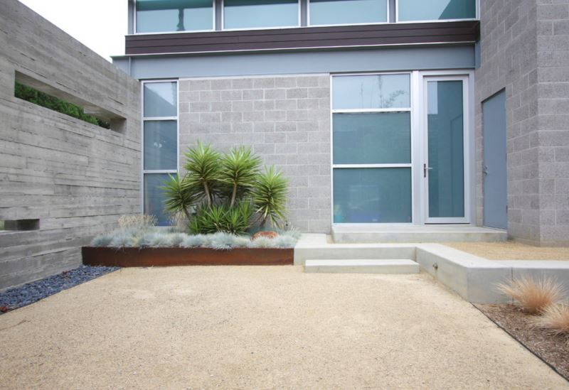 Yucca is a focal point in this modern yard