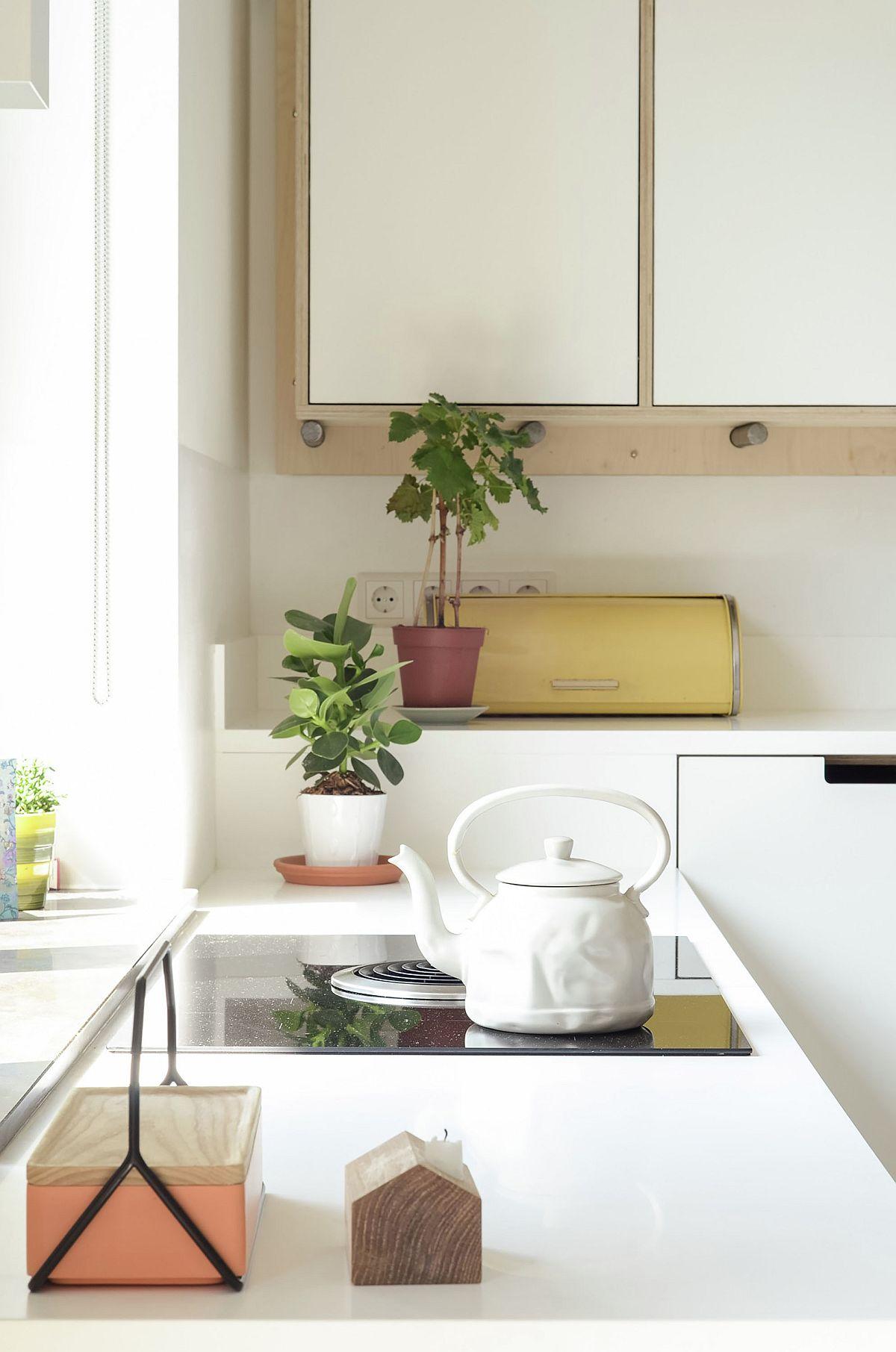 Elegant and functional kitchen worktops