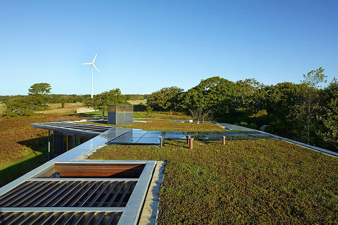 Green rooftop with solar panels