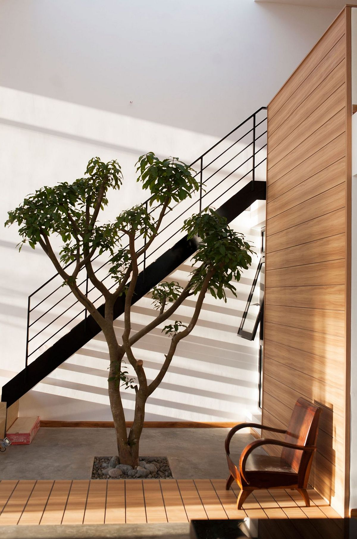 It is the persence of indoor tree that gives serenity and defines this cool Vietnamese home