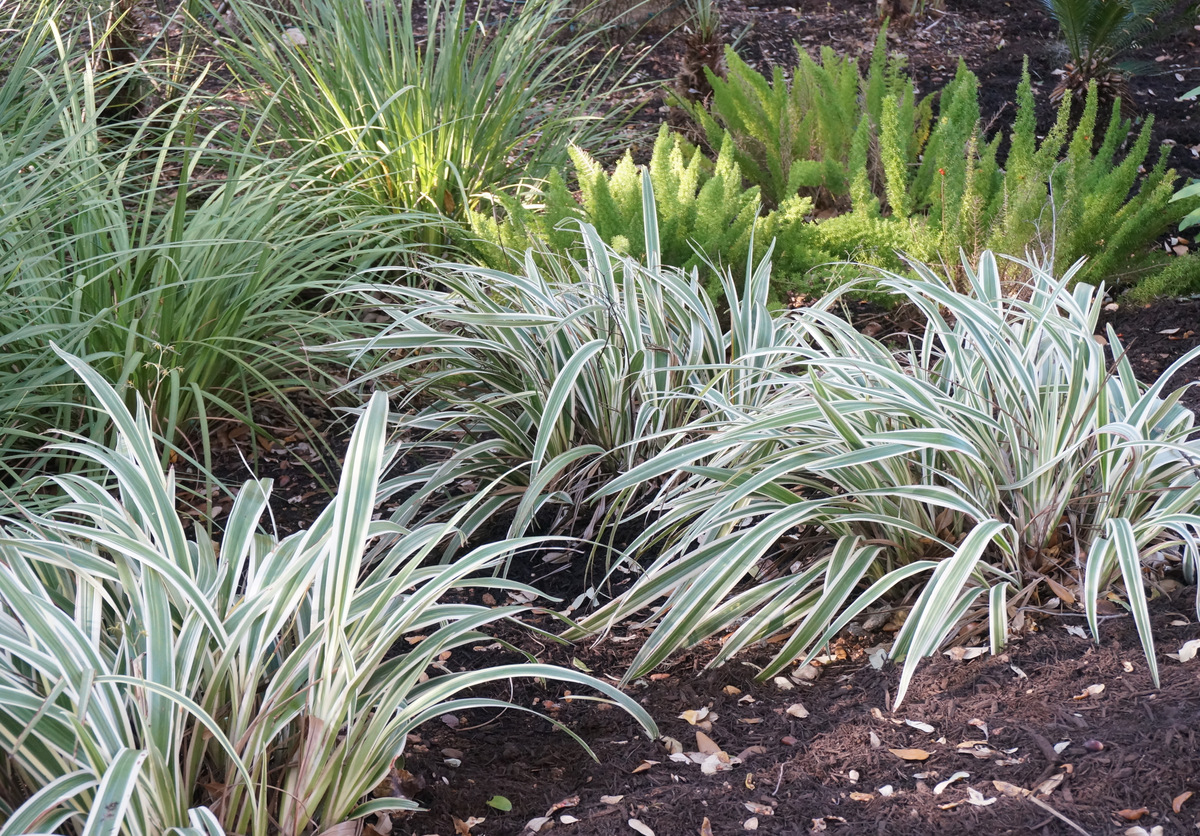 Blowing leaves can help keep flowerbeds tidy