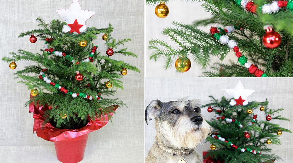 DIY mini Christmas tree [From: Hands Occupied]