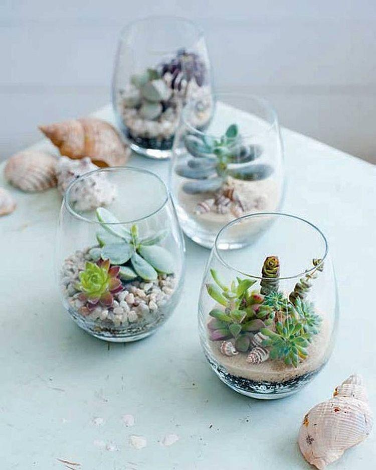 Coastal chic DIY terrarium idea