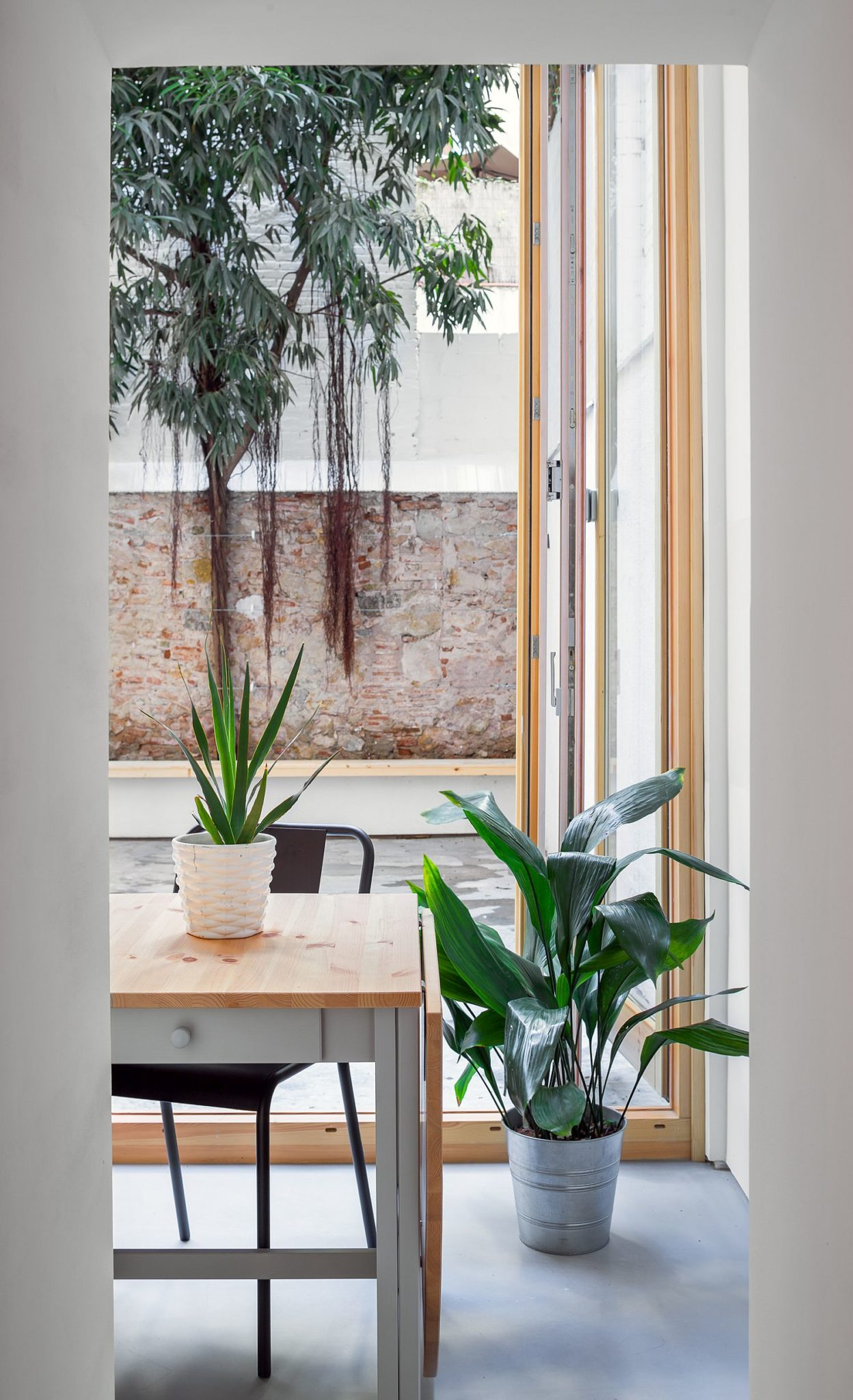 Greenery becomes an integral part of the neutral interior
