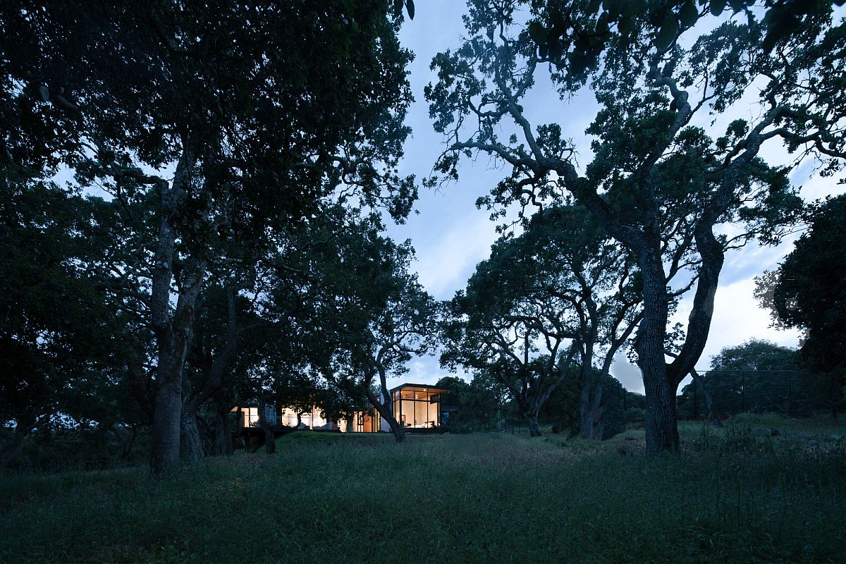 Forty one oak trees sit on the lot in Portola Valley