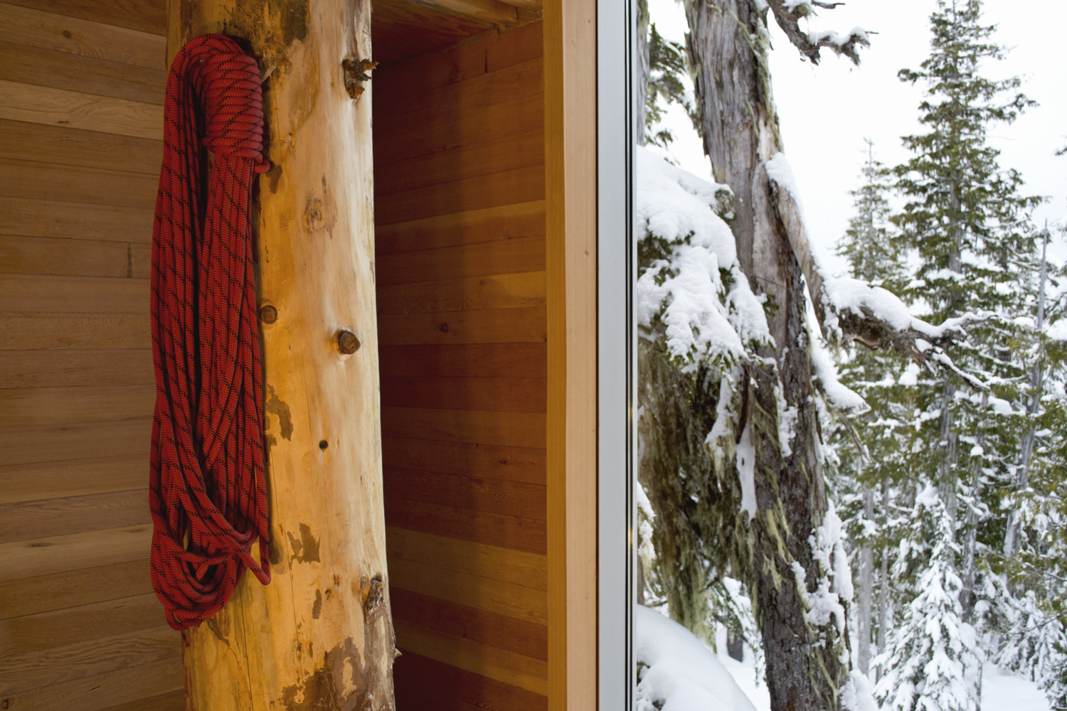Closer look at the douglas fir columns inside the cabin