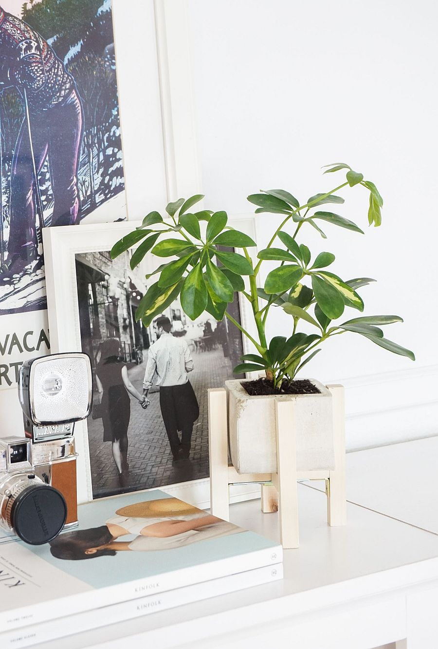 DIY Concrete Planters: Fabulous Projects that Bring Greenery Indoors